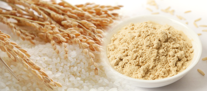 how to make rice protein